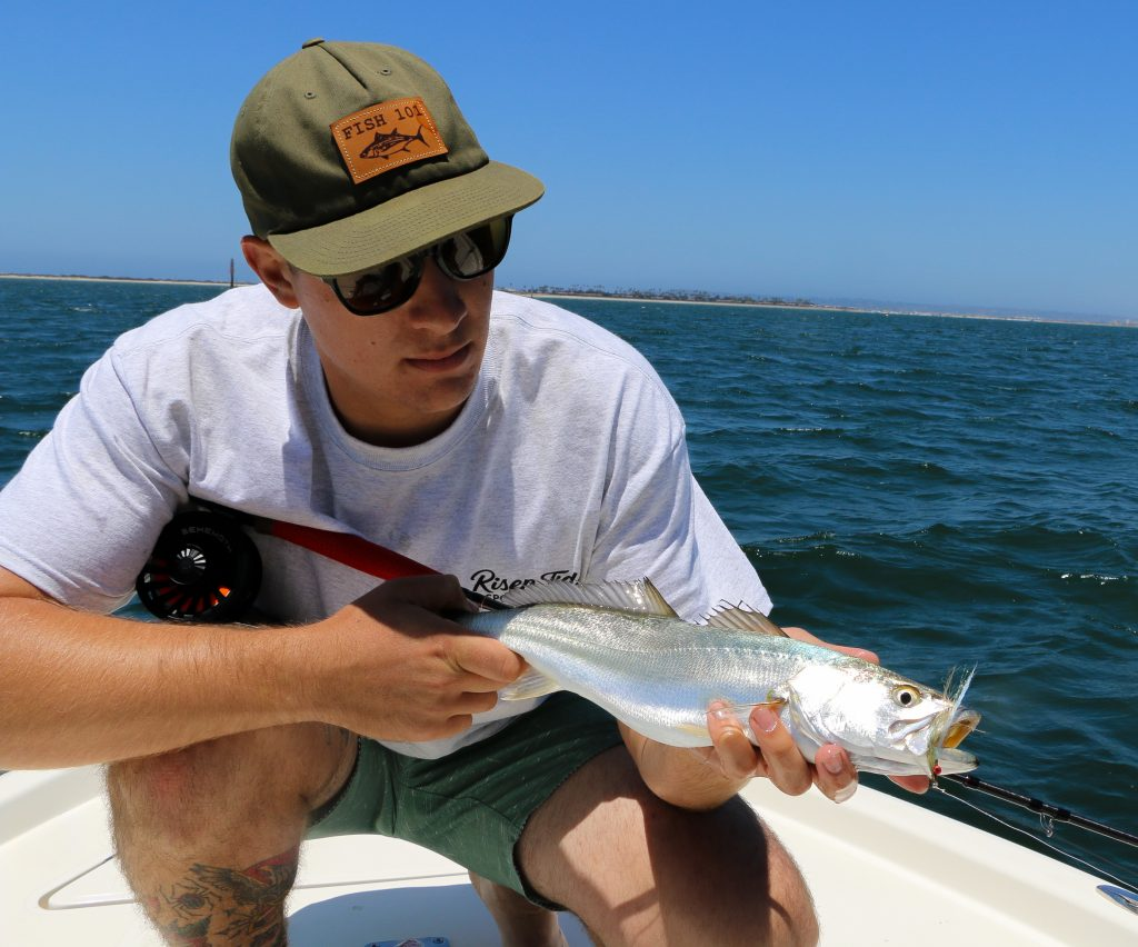 San diego bay fishing report 6 4 6 10 risen tide for Tides for fishing san diego